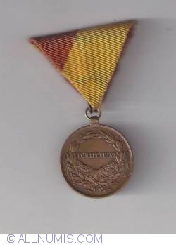 Image #1 of Carolus 1917 - Valour medal