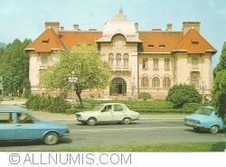 Piatra Neamț - Muzeul de istorie (1981)