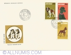Canine national exhibition
