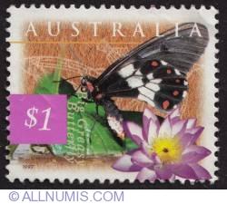 1 Dollar - Big Greasy Butterfly