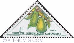 1 F 1962 - Avocado (Persea americana)