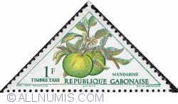 Imaginea #1 a 1 F 1962 - Mandarin (Citrus reticulata)