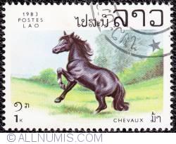 Image #1 of 1 k Horse 1983