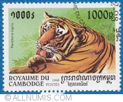 Image #1 of 1000r Panthera tigris-Tiger 1998