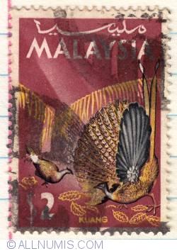 Image #1 of $2 1965 - Great Argus Pheasant