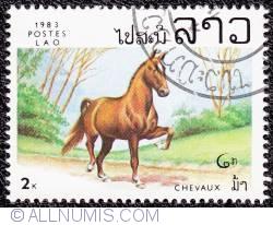 Image #1 of 2 k Horse 1983