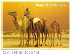 Image #1 of 2003 Camels in the desert