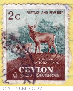 Imaginea #1 a 2c Sambars Ruhuna National Park 1958