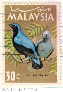 Image #1 of 30¢ 1965 - Blue-backed Fairy Bluebird