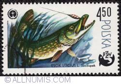 Image #1 of 4,50 1979 - Esox Lucius