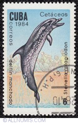 Image #1 of 6¢ Atlantic Spotted Dolphin 1984