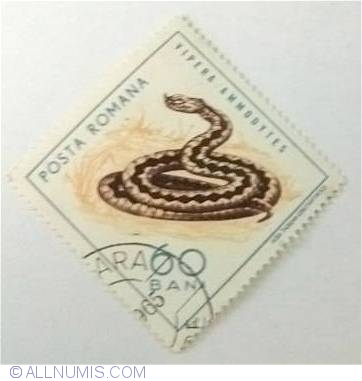 Stamp of 60 Bani Vipera ammodytes 1965 from Romania - ID 5630.