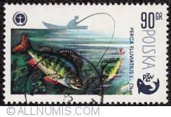 Image #1 of 90 gr 1979 - Perca Fluviatilis