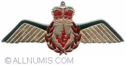 Image #1 of AesOp Wings