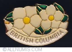 Imaginea #1 a British Columbia flower (Pacific Dogwood)