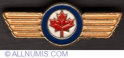 Imaginea #1 a Canadian Air Force Honorary Colonel pin 2009