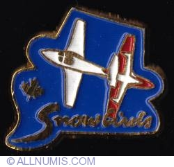 Imaginea #1 a Canadian Air Force Snowbirds 2006