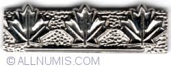 Imaginea #1 a Canadian Forces Command Commendation