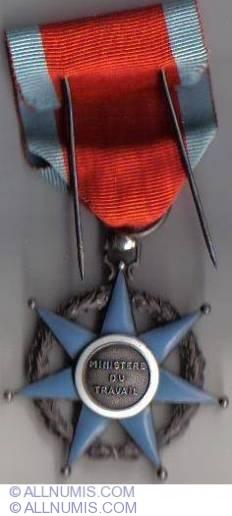 Chevalier de l'Ordre du Mérite social