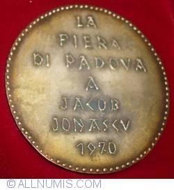 Image #2 of City of Padua