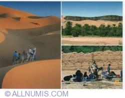 Image #1 of Erfoud-the desert-2010
