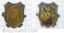 Romania Military insigna