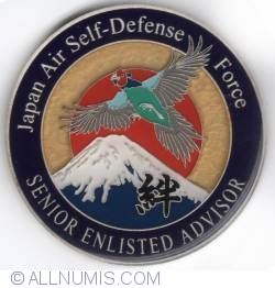 Image #2 of Japan Air Self-Defense Force Senior Enlisted Advisor 2013