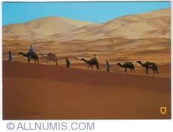 Image #1 of Merzouga-camel ride-2010