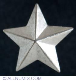 Imaginea #1 a Military badge