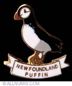 Imaginea #1 a Newfoundland Puffin 2009
