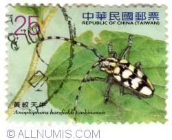 Imaginea #1 a NT$25.00 2010-Anoplophora horsfieldi tonkinensis