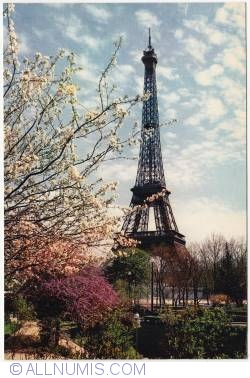 Image #1 of Paris - Eiffel tower in spring