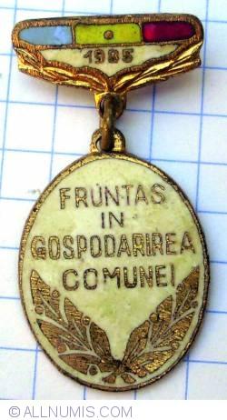Fruntaș în gospodărirea comunei - 1985