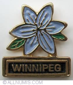 Image #1 of Winnipeg-Prairie Crocus-Provincial flower