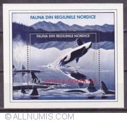 100 lei Killer whale (Orcinus orca) 1992