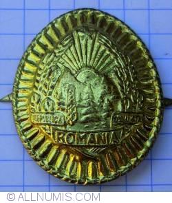 Socialist Republic of Romania coat of arms