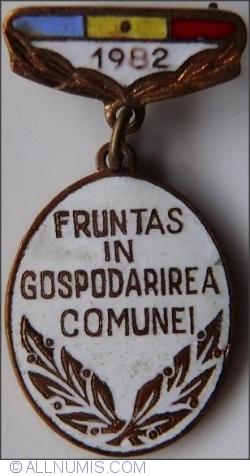 Image #1 of Fruntas in Gospodarirea Comunei - 1982