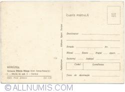 Image #2 of Eftimie Murgu (Commune)
