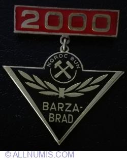 Image #1 of Barza Brad 2000