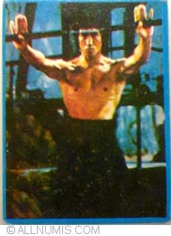 Image #1 of 31 - Brucee Lee