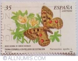 Image #1 of 35 Pesetas 2000 - Parnassius apollo L.