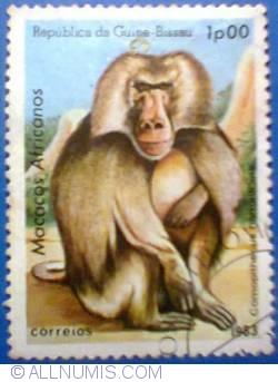 1 peso 1983 - Comapithecus hamadryas - Babuin
