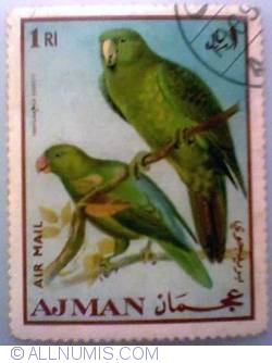 Image #1 of 1 Rial 1969 - Azure-rumped Parrot