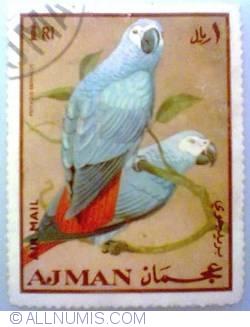 Image #1 of 1 Rial 1969 - Papagal gri
