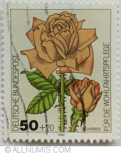 Image #1 of 50 + 20 Pfennig 1982 - Rose