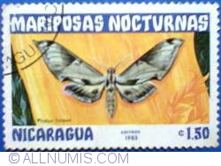 Image #1 of 1,50 Centavos 1983 - Pholus licoon