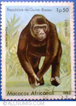 Imaginea #1 a 1,50 peso 1983 - Gorilla gorilla - Gorila