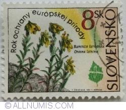 Image #1 of 8 Sk 1995 - Onosma tornense
