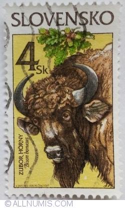 Imaginea #1 a 4 Sk 1996 - Zimbrul (Bison bonasus)