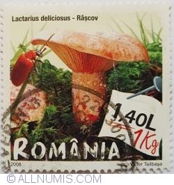 1,40 Lei 2008 - Lactarius deliciosus - Râșcov